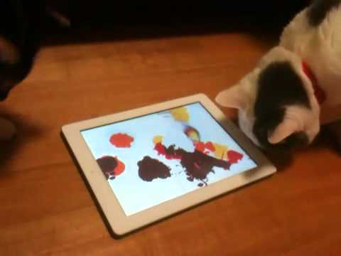 iPad Painting for Cats