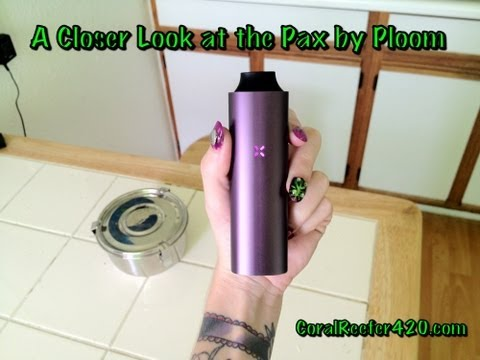 A Closer Look at the Pax by Ploom