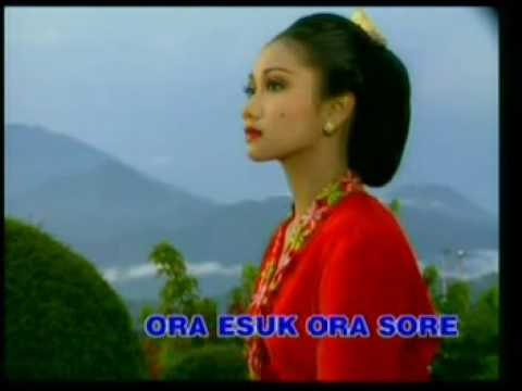 Campursari Jawa video