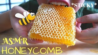 ASMR RAW HONEYCOMB (SARANG MADU) | STICKY EATING SOUNDS | ASMR INDONESIA | NO TALKING
