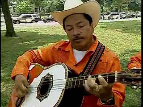 Los Camperos de Valles demonstrate the instrumental and vocal techniques of son huasteco