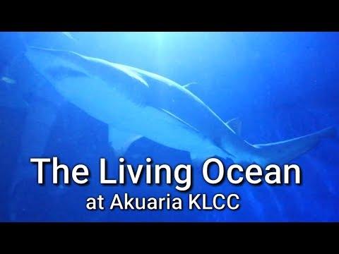 The Living Ocean at Akuaria KLCC