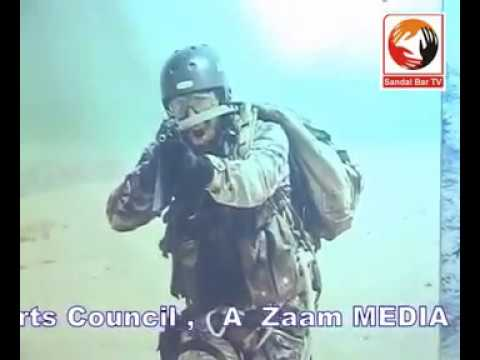 Pakistan Defence Day Ceremony At Faisalabad Arts Council 6 Sep 2011- Sandalbar Tv video