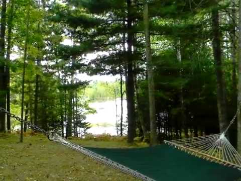 Homes for Sale - 3537 Doll Rd - Lupton, MI 48635 - Mark Benjamin