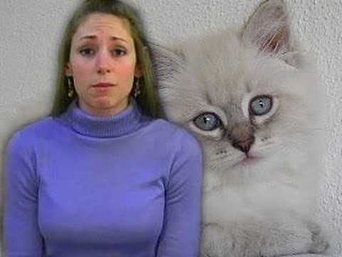 Animal Cruelty, Pet Abuse, Nutrition by Natalie