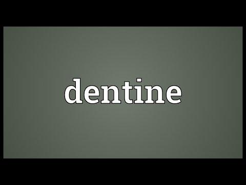 Header of dentine