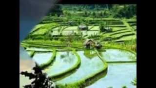 Download Lagu Bahasa Matahari - Ebiet G Ade Gratis STAFABAND