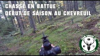 Chasse en battue : Début de saison au Chevreuil - Chevreuil, Sanglier, Renard -- Roe Deer hunting