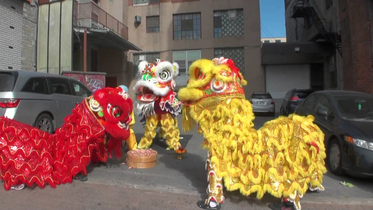 Lion Dancing Ireland Chinese Lion Dance Club