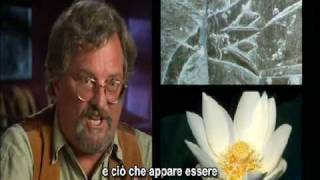 [8-10] History Channel Ancient Aliens, Alieni nell