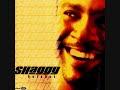 Shaggy--Keep'n It Real