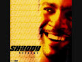 Shaggy--Keep'n It Real