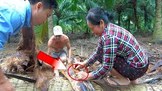 Phát hiện sinh vật lạ trong cây dừa để lâu cả nhà kéo nhau ra băt và cái kết | Góc Miền Tây-Tập 225