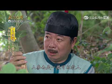 台劇-戲說台灣-水仙尊王系列-惡婆婆三告官-EP 06