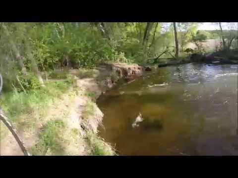 Bowfishing Minnesota-