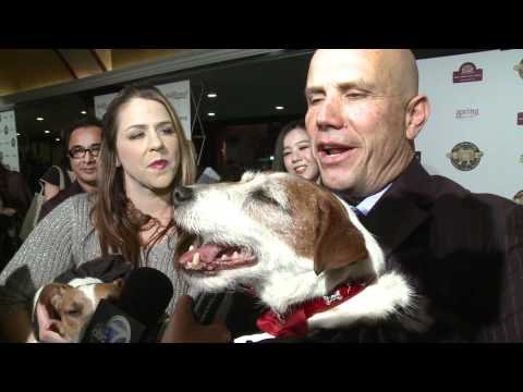 Uggie wins Best Movie Dog at the Golden Collar Awards