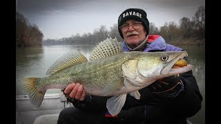 76yrs old catches biggest zander of his life and cannot hold back tears!