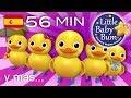 Contar cinco patitos | Y muchas más canciones infantiles | ¡56 min de recopilación LittleBabyBum! MP3