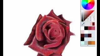 Rose in Sketch Book Pro 2010.wmv