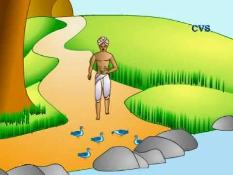 Panchatantra Hindi Animation Stories - Duck Golden Egg video