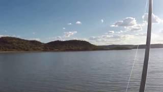 Geelvis te Otterskloof by Vanderkloof dam