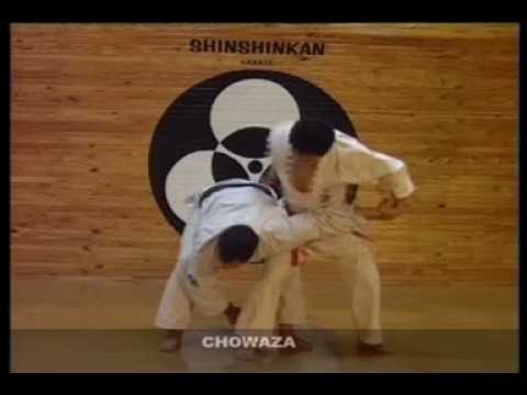 SHINSHINKAN ISSHIN RYU KARATE  - CHO WAZA ( STREET SELF DEFENSE )