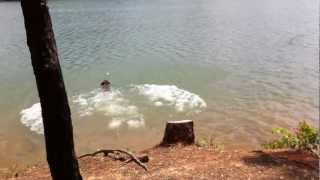 sally jumps in lake.MOV