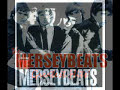 Thumbnail of video Merseybeats- Wishin' and hopin' (Lyrics)
