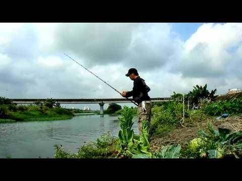 SNAKE FISH TAIWAN - 76SH  VS  OMOTO 6000CSM