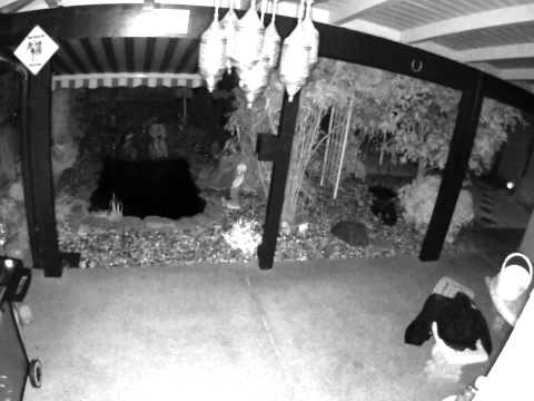 Napa Quake Security Cam (from Vacaville)