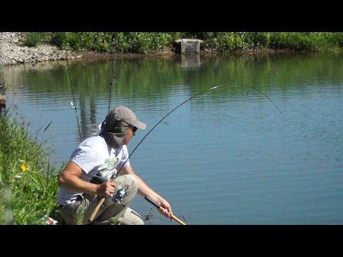 Спиннинг для форели Area Fishing Как выбрать спиннинг для ловли форели для начинающих