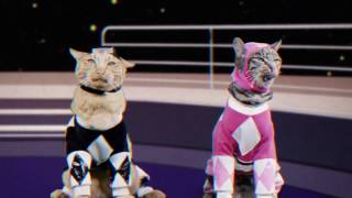Mighty Morphin Meower Rangers – Who's at the Door? - Episode 3