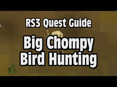 RS3: Big Chompy Bird Hunting Quest Guide – RuneScape