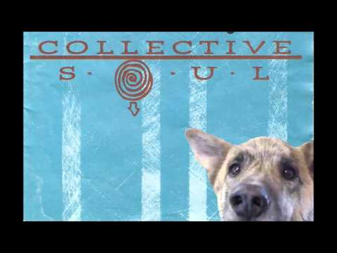Collective Soul - Shine (Ultimate Dog Tease)