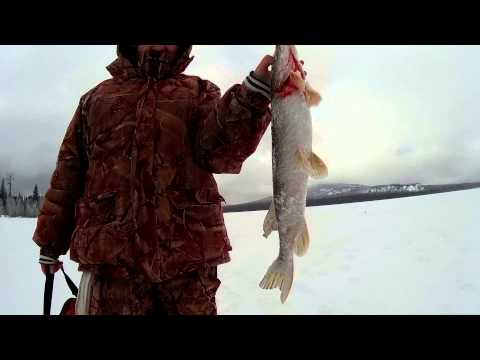 рыбалка на зюраткуле фото