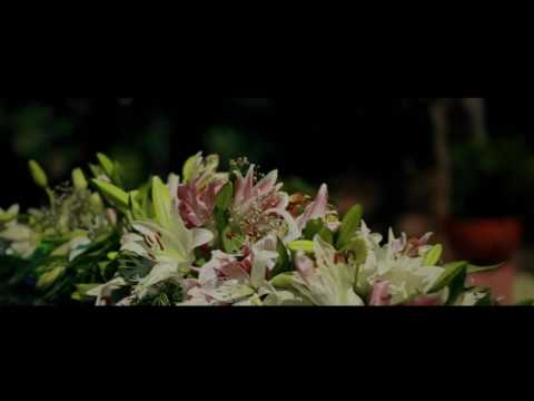 RINCHU. +. NEHA.                 WEDDING TEASER