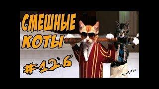 Приколы С Котами Смешные Кошки и Коты 2018 Funny Cats ДО СЛЁЗ