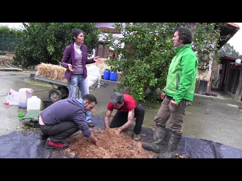 Cómo crear semilleros de microorganismos 2ºparte//Agricultura Regenerativa//Llevamealhuerto.com