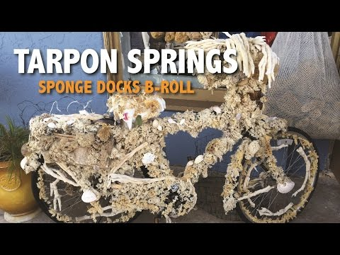 Tarpon Springs Sponge Diving