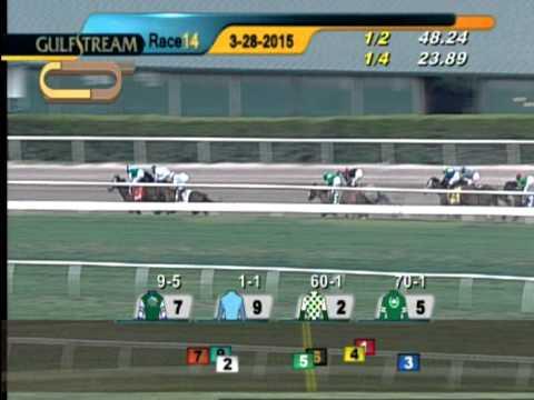Gulfstream Park Race 14 Besilu Stables Florida Derby | March 28, 2015