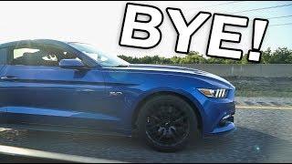 DESTROYING 5.0 Mustangs in my Evo X