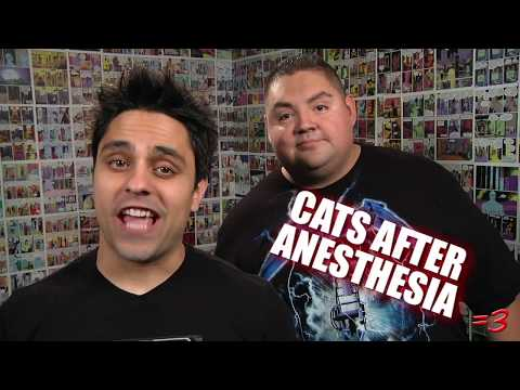 Ray William Johnson - HELLO MEXICO =3