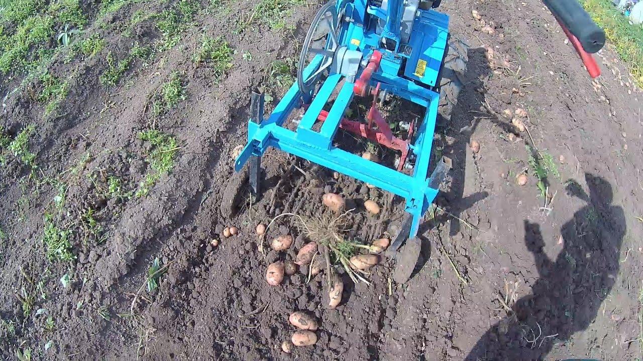 Картофелекопалка для мотолебедки своими руками