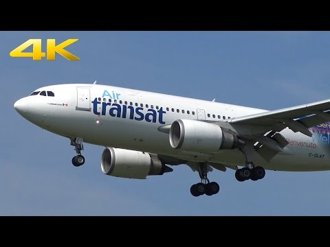 [4K] 39 Approaches in nice morning light | Amsterdam Schiphol Zwanenburgbaan AMS | 4K | 20.08.15