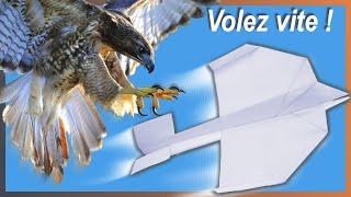 Comment faire un avion en papier. L'Hirondelle . Champion - Vole beaucoup! Avion #6