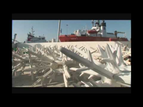 Dolphin Energy Limited Artificial Reefs in Qatar by CSA International Inc. Part 1