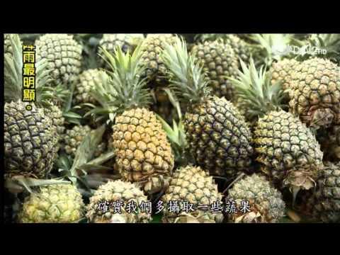 蔬果生活誌-20131005 聰明吃素變漂亮
