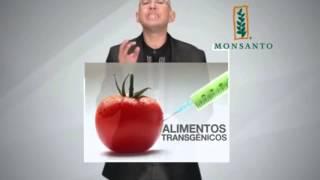 Quién es Monsanto? Qué hay detrás de esta Empresa. Completo Infraganti.