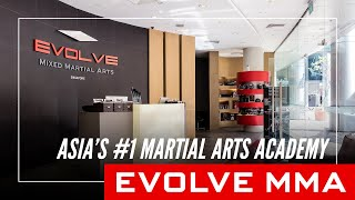 An Introduction to Evolve MMA: Asia's Top Martial Arts Organization