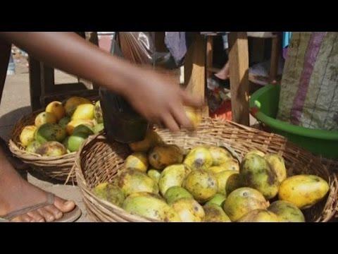 Sierra Leone • Ebola: 5 morts, 15 cas confirmés